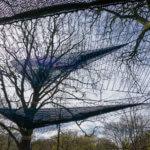 Treetop_manchester_15