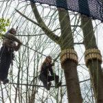 Treetop_manchester_7