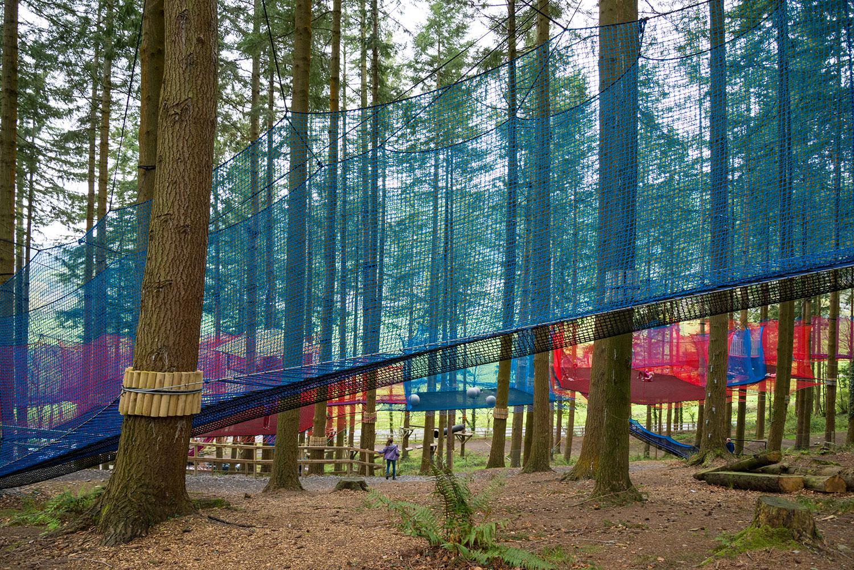 Zipworld forest 1