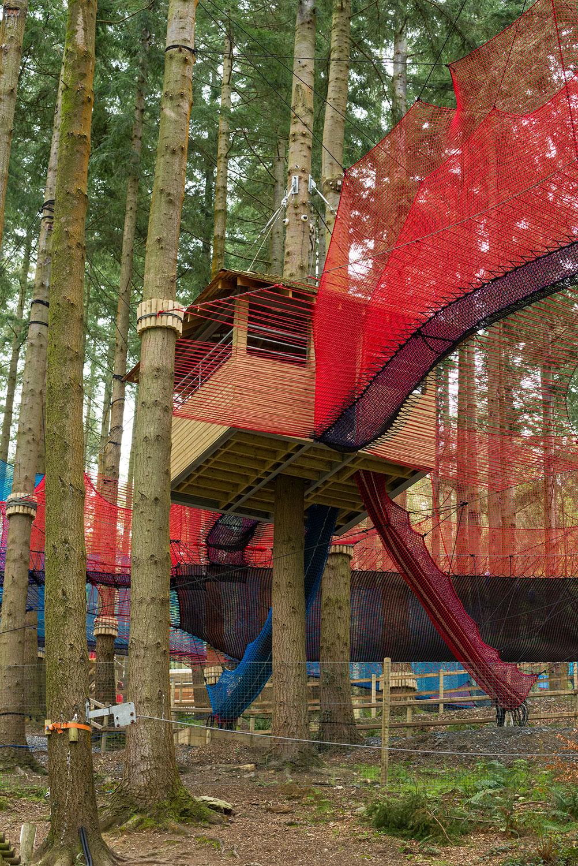 Zipworld forest 12