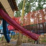 Zipworld forest 14