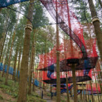 Zipworld forest 16