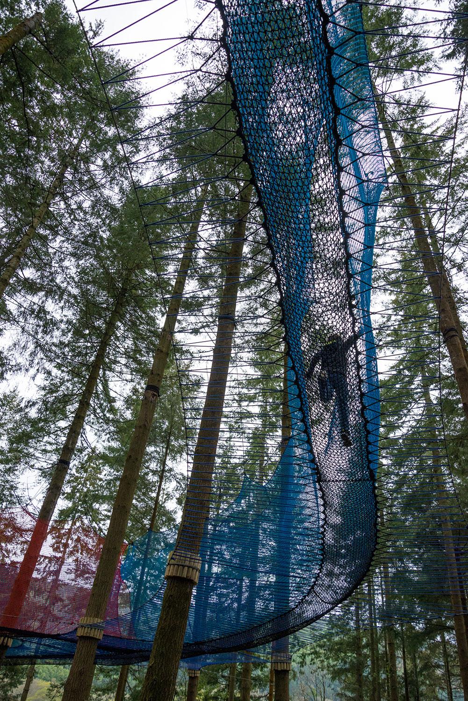 Zipworld forest 17