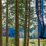 Zipworld forest 18