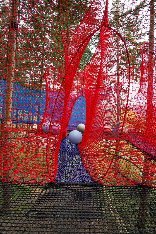 Zipworld forest 19