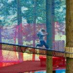 Zipworld forest 5