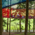 Zipworld forest 6