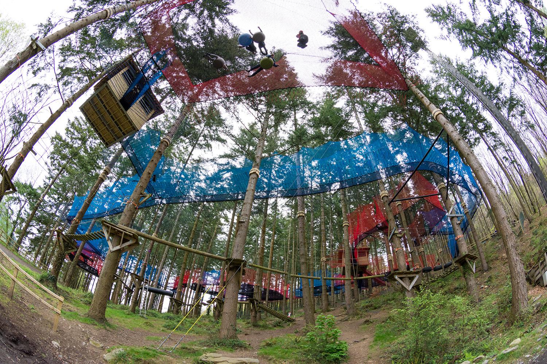 Zipworld forest 8